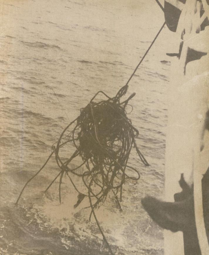 1958 - Image of Cable Damage Recovered to Cable Ship -